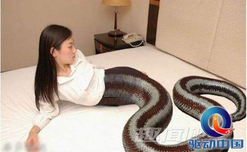 人头蛇身的妖物!好另类恐怖的美人蛇们