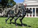 科学家研发机器人猎豹 速度可超飞人博尔特