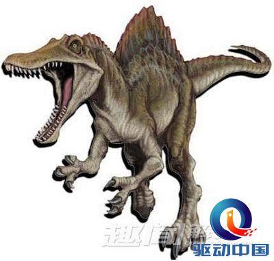 而鳄鱼头骨是现今动物物种中抵抗扭曲度最为显着的