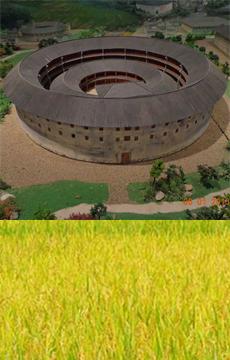 世界文化遗产:福建土楼
