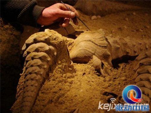 盘点鲜为人知的十大超级远古动物:恐怖的陆地杀手蝎