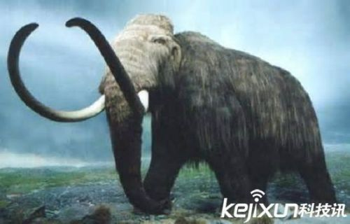 十种重现人间的灭绝动物 动物界的起死回生