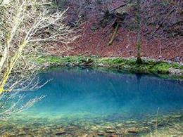 里斯尼亚克国家公园