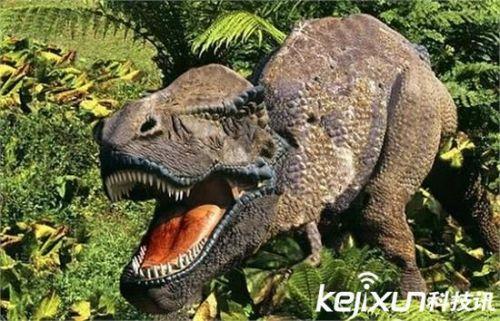 白垩纪奇异爬行动物竟是蜥蜴头蛇身 震惊!