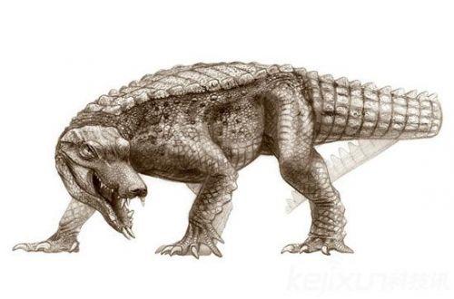 动物祖先都是远古巨兽