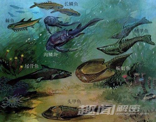 走进远古时代:探索生物大灭绝的奥秘(3)