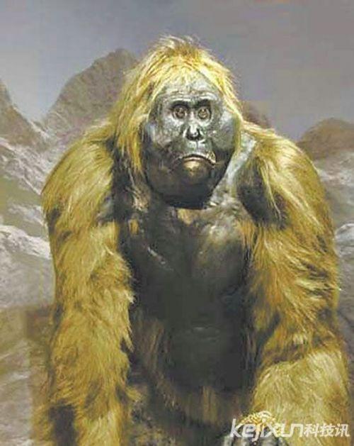 世界七大史前动物始祖:人类祖先竟是大脚野人
