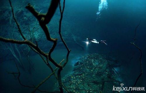 海底森林手绘图