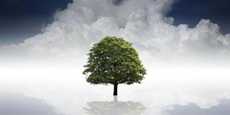 从亚巨头的云之争 看国内云计算的未来
