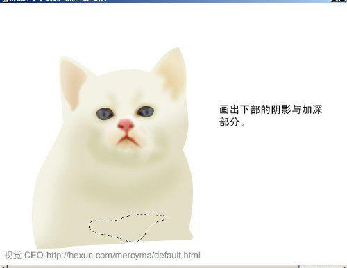 可爱小猫ps照片