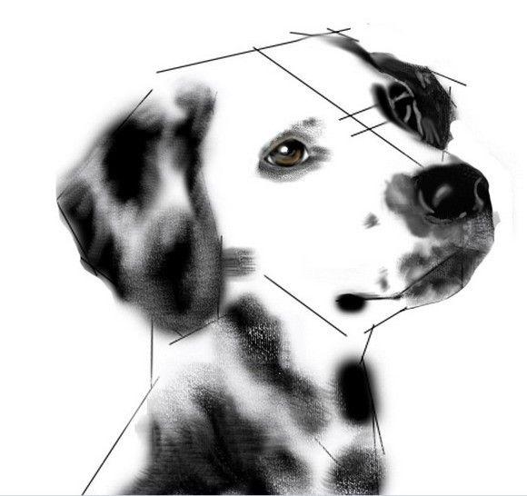 可爱小狗素描图