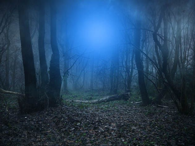 ps如何合成昏暗阴森恐怖森林图片