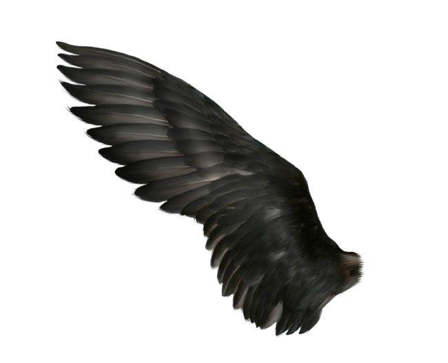 ps合成恐怖魔法黑天使图片的方法与步骤