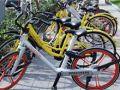 共享单车免费骑是行业洗牌前兆,能存活下去的又有几家?