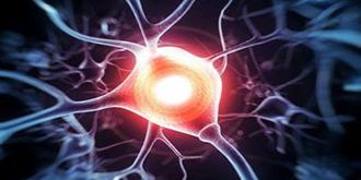 人工智能新发现:未来存储器、硬盘可仿人脑神经元运行