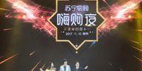 苏宁易购双十一大型活动系列 球赛及明星演唱会图集