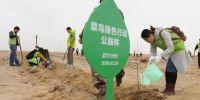 菜鸟绿色行动造福敦煌:种树1000亩,市民快递袋管一年
