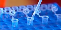 印度国家正在建立一个大规模的基于区块链的DNA数据库