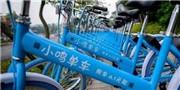 小鸣单车账户仅剩35万 法人被限制出镜