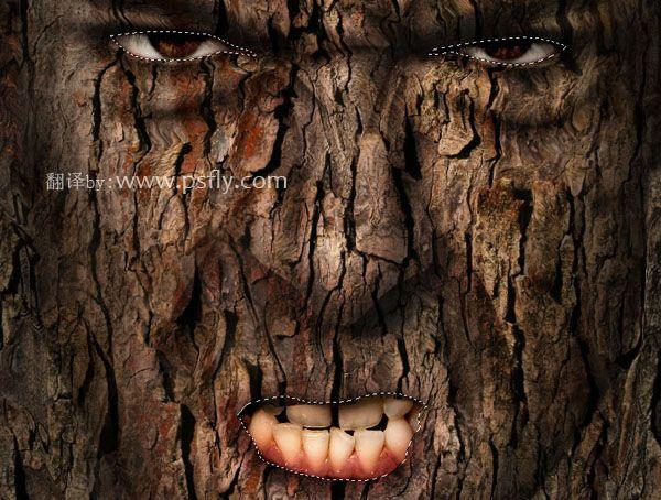 photoshop人脸与树皮的合成特效效果(1)