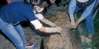 考古发现:韩国发现445年前干尸及怀孕妻子