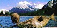 震惊世界!黑海古城墓室惊现3000年前神秘海底人鱼(组图)