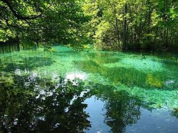 布里特威斯湖国家公园
