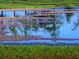 库苏古尔湖