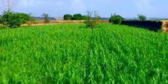 航拍:陕北农村夏季田园风貌之云团庄