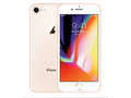 Apple iPhone 8 64GB 金色4G手机