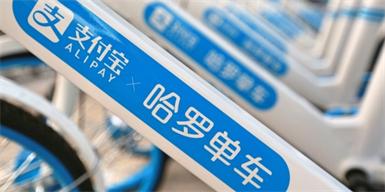"""北京交委""""禁停令""""在先,哈罗单车大胆试水?"""