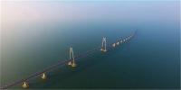 港珠澳大桥正式通车,格力意外成了最大赢家?