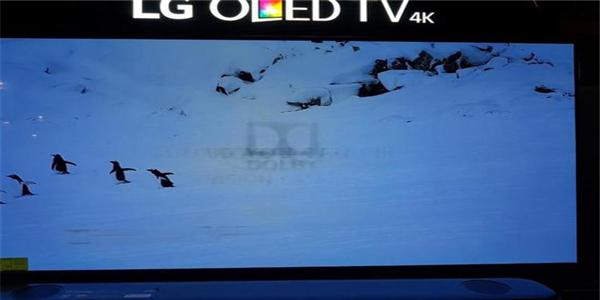 线下店OLED展示机再次烧屏!LG不烧屏承诺到底还作数吗?