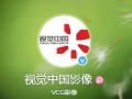 视觉中国官网恢复上线运营,开盘涨近8%