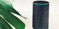 2019年Q4全球智能音箱市?。貉锹硌?、谷歌依然领先