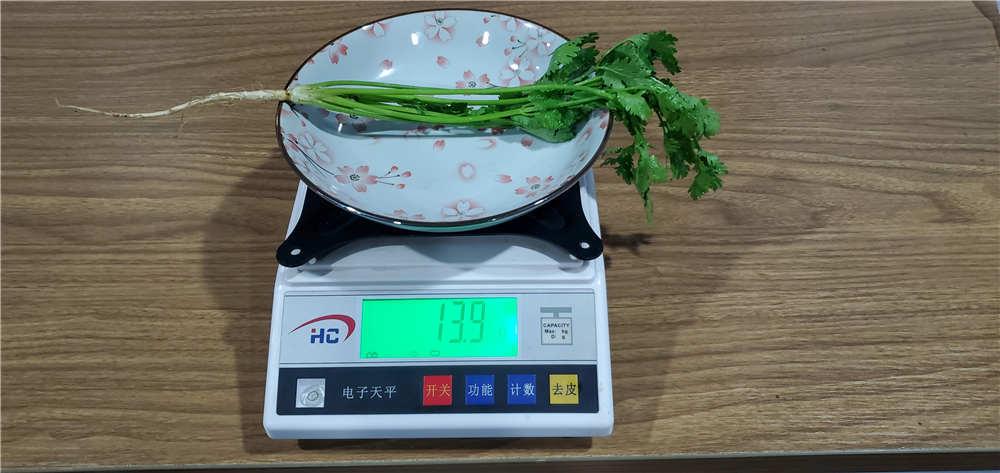 美的545升冰箱体验:香菜能多放几天了!